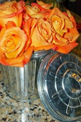 Garbage Pail Roses