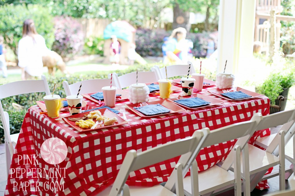 Farm Party Table by Pink Peppermint Parties